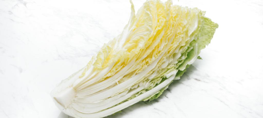 白菜とはどんな野菜?