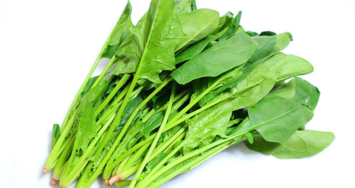 ほうれん草の代わりになるのはどんな野菜?代用品と調理のポイントを紹介!
