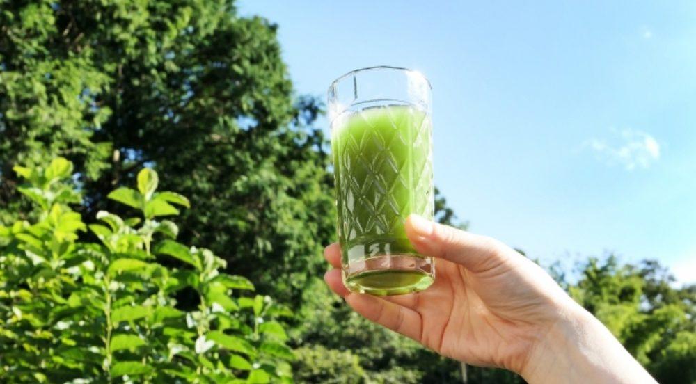 グリーンスムージーってご飯と一緒にとってOK?効果的な飲み方を知ろう!
