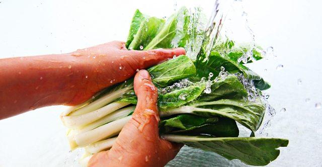 冷凍した小松菜の解凍・調理方法