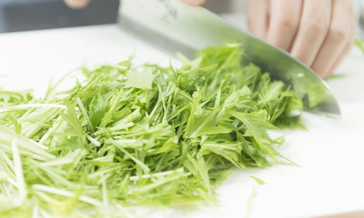 水菜のシャキシャキ感を残したままの保存方法を紹介をします!長持ちさせるコツも!