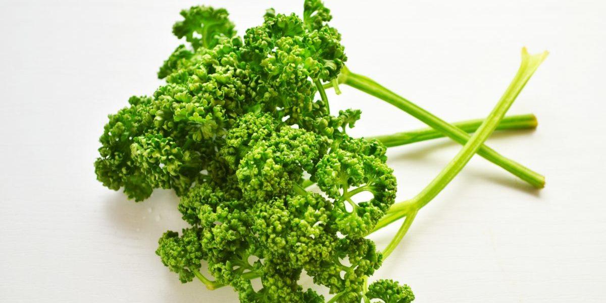 パセリは茎にも葉と同様の栄養があった!こんな風に食べられますよ