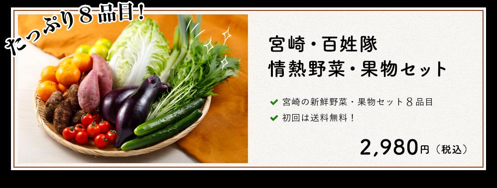 フレッシュファースト「宮崎・百姓隊 情熱野菜・果物セット」
