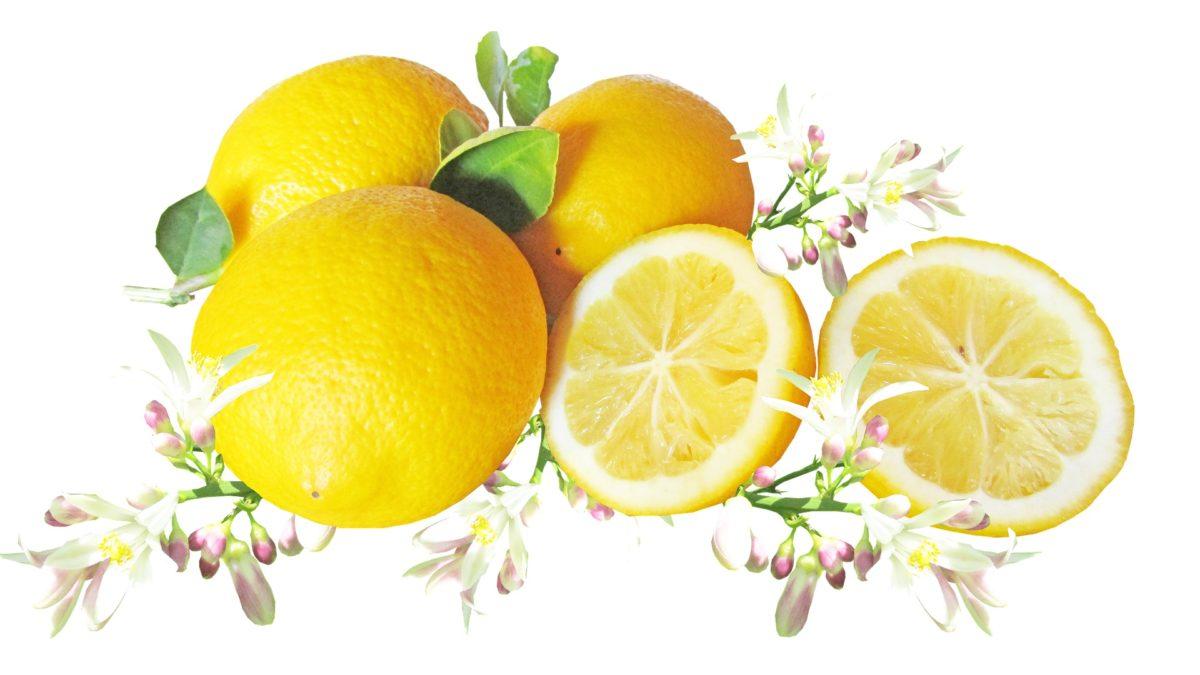レモンは栄養たっぷり!ビタミンCやクエン酸の嬉しい効果や効能も