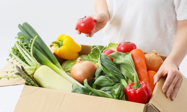 野菜ジュースの材料に野菜宅配がおすすめな理由