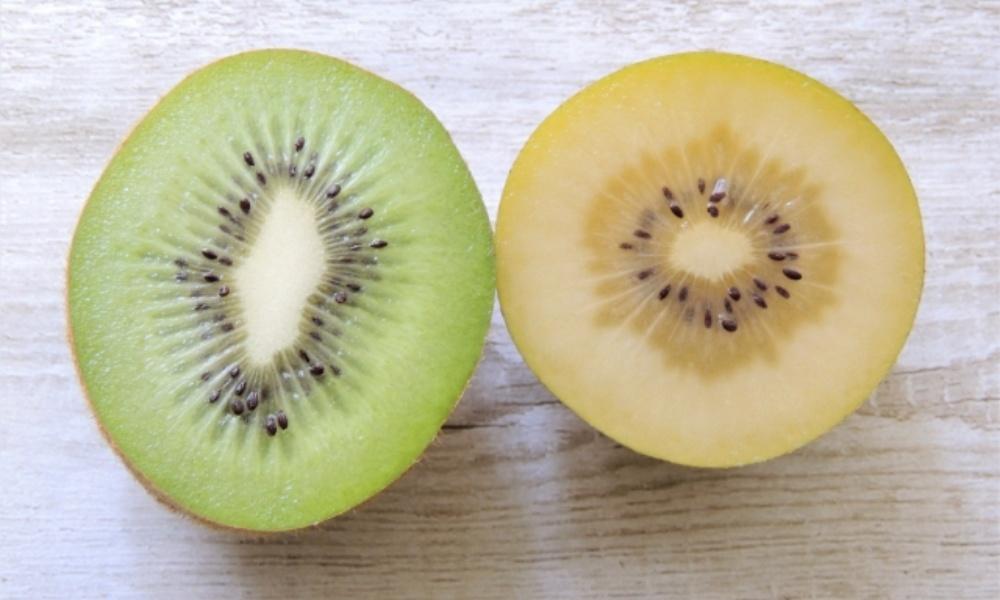 キウイの種類【グリーンとゴールドの違い】