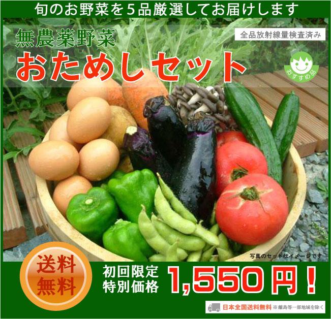 ハニー★ビー「無農薬野菜おためしセット」