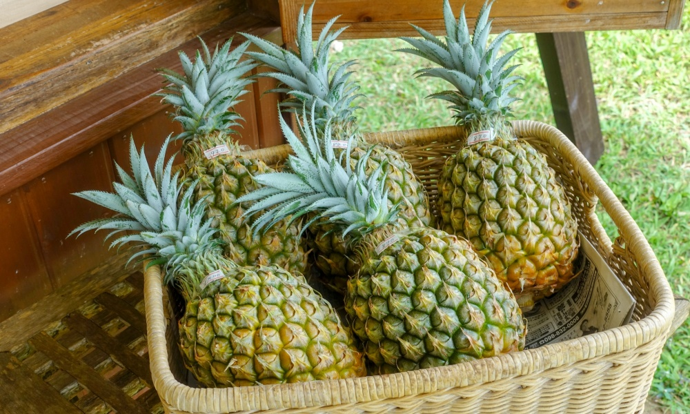 美味しいパイナップルの選び方はこれ!追熟しないから、買う時の見分け方が大切