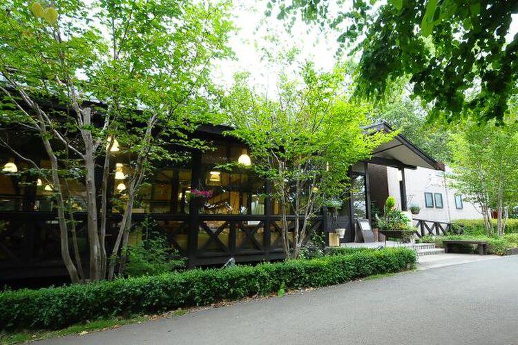 森の家庭料理レストラン(茨城町)