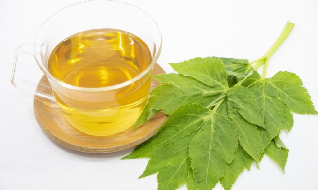 明日葉をダイエットに活用するなら青汁やサプリメントがおすすめ