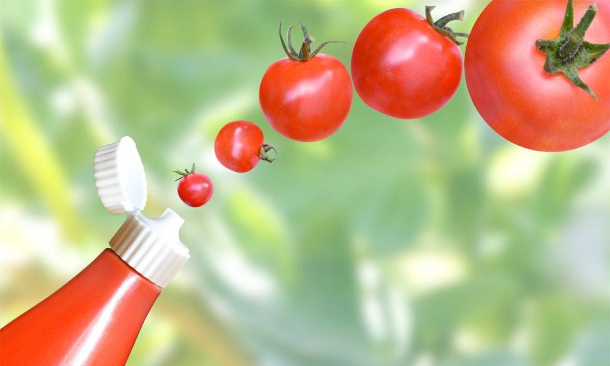 トマト嫌いの最大あるある「ケチャップは好き」には根拠があった!