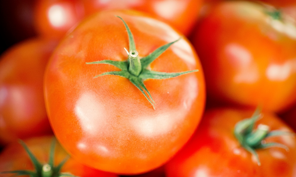 トマトを長持ちさせるコツ!保存するなら常温・冷蔵・冷凍そして保存食