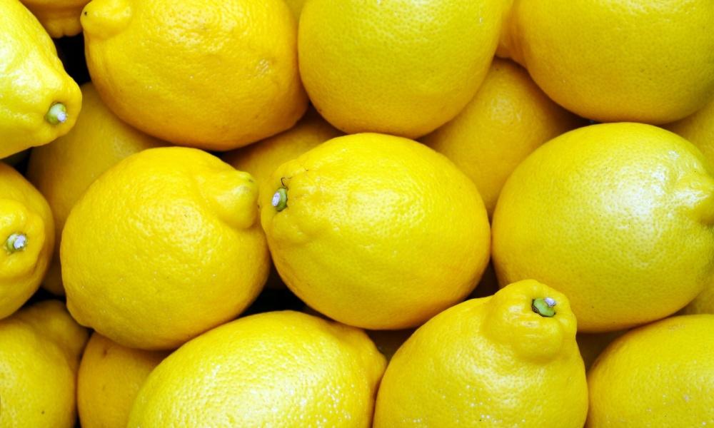 レモンを長持ちさせる保存方法はどれ?常温・冷蔵・冷凍で比較してみた