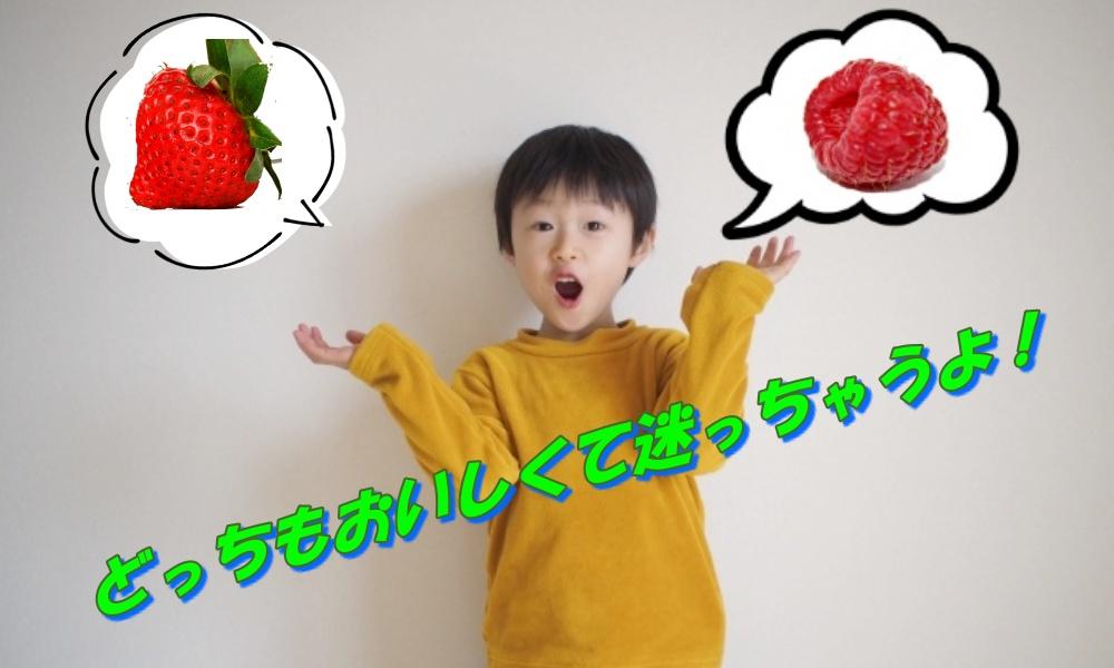 ラズベリーとイチゴのおもな栄養を比較