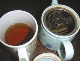 自分で明日葉茶を作ってみる!?