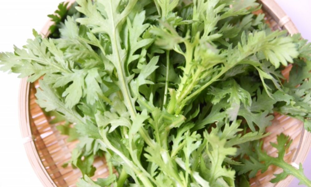 春菊は冬が美味しい!春菊の栄養やその凄すぎる効果・効能を解説します!!