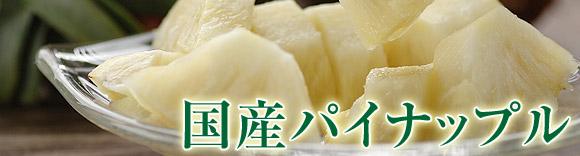 沖縄県から産地直送 Oisix