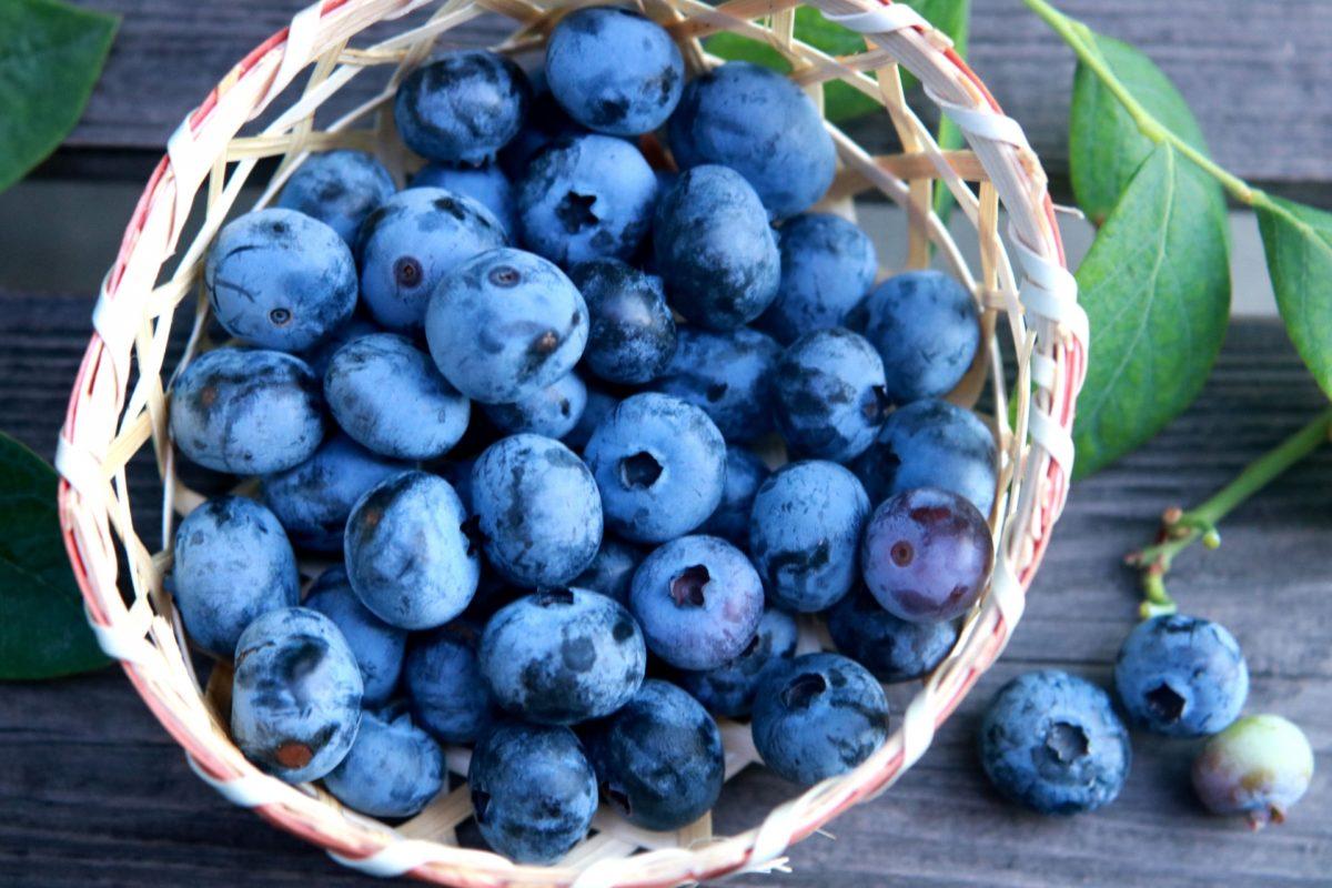 ダイエットに効果的なブルーベリーの食べ方のコツ