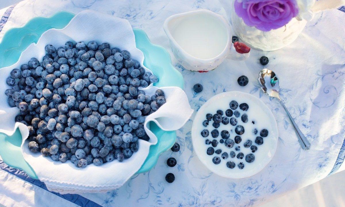 ブルーベリーは太る?それとも痩せる?ダイエット効果のある食べ方や注意点を紹介