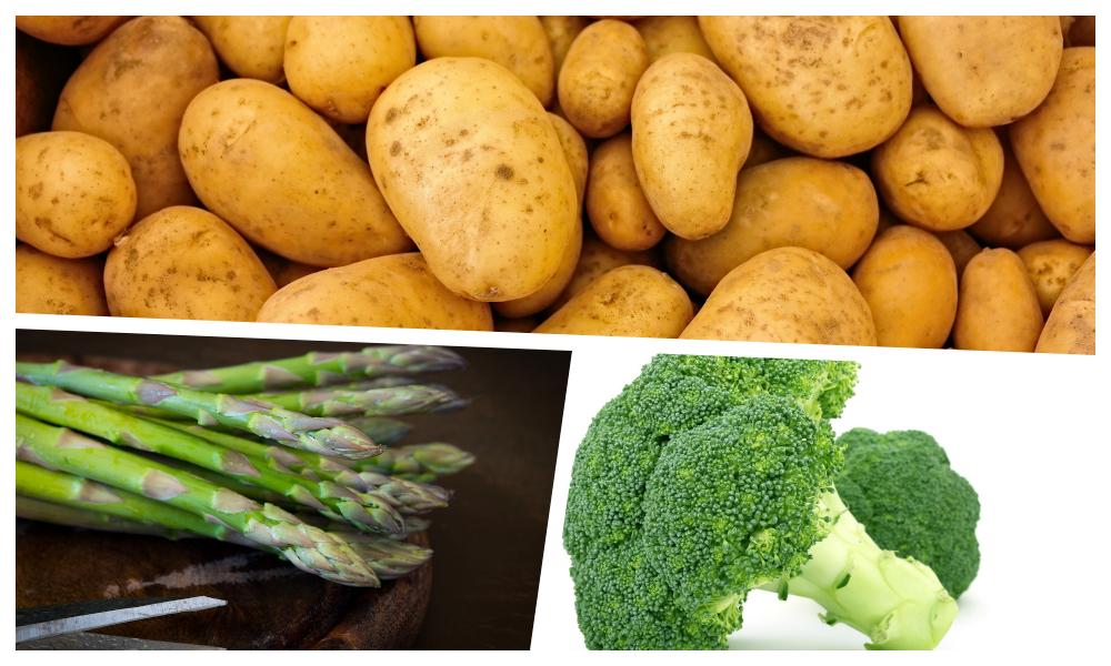 長崎産野菜の魅力を紹介