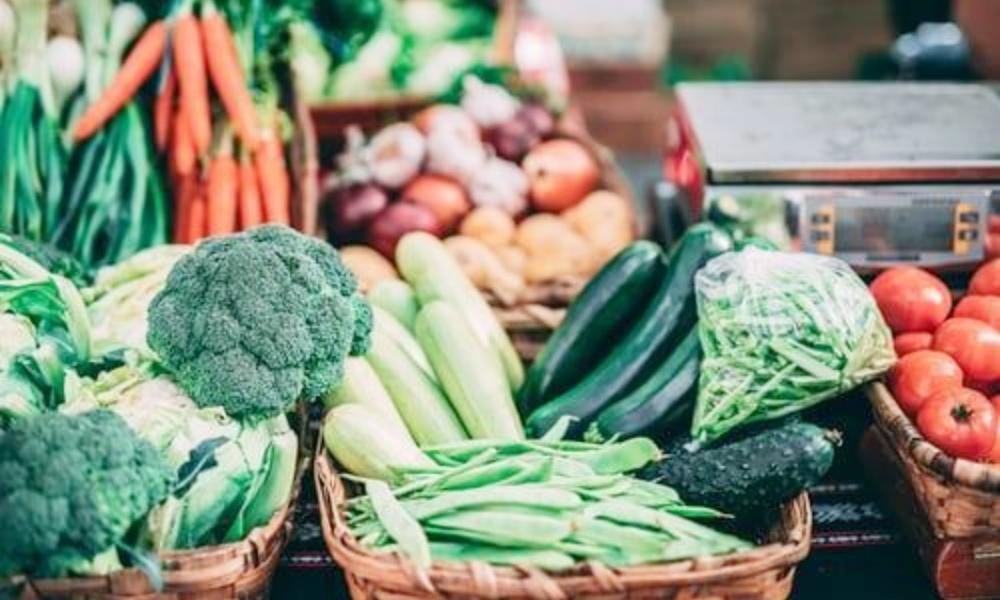 広島県の野菜宅配10選!新鮮でおいしいこだわり野菜を紹介します!