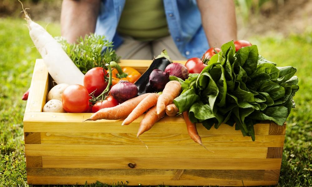 「有機栽培」と「オーガニック」は同じ意味