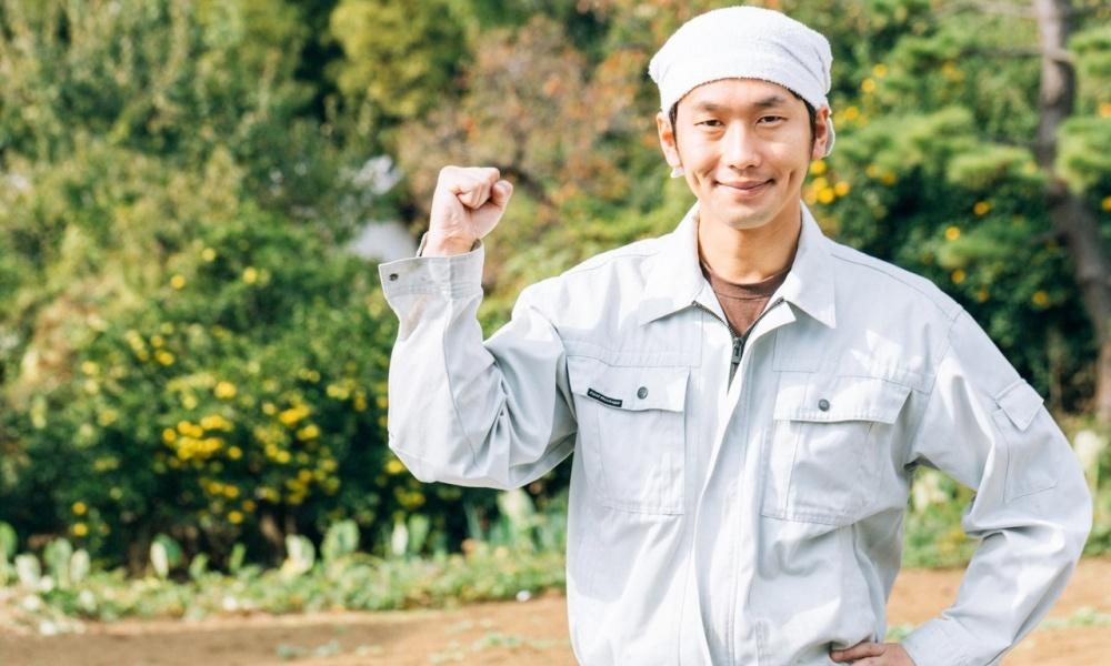 美うまし国・みえの伝統野菜6品目を紹介