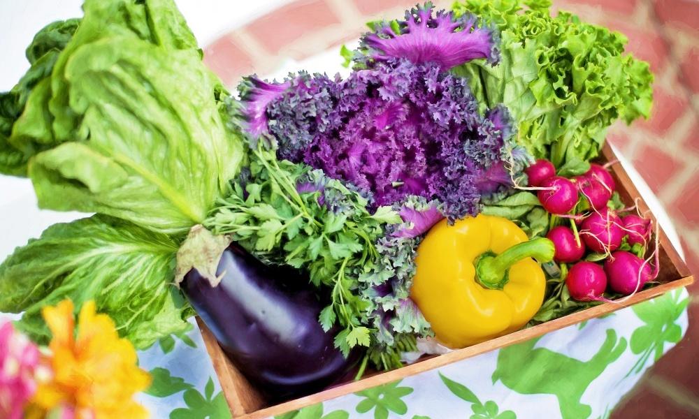 奈良県で野菜宅配を利用するならこの10社!合わせて大和野菜も紹介