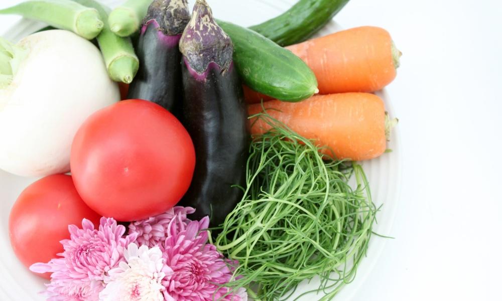 香川県高松市で子育て中の方必見!おすすめの野菜宅配といえばこの10社