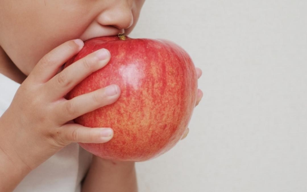 りんごを芯まで食べるアイディアを紹介!スターカットや丸かじりの秘訣も!