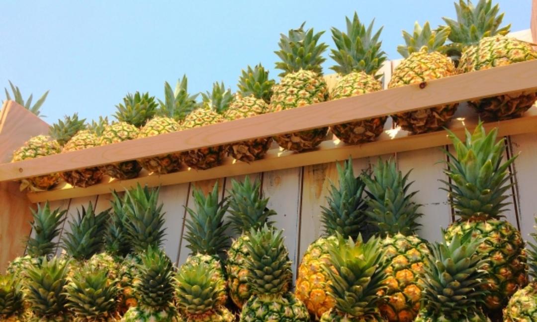 パイナップルで腹痛が起こる原因