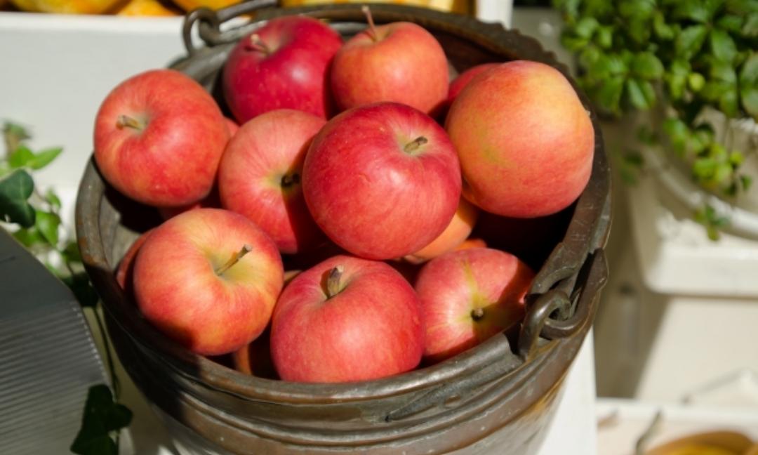 りんごの正しい保存方法